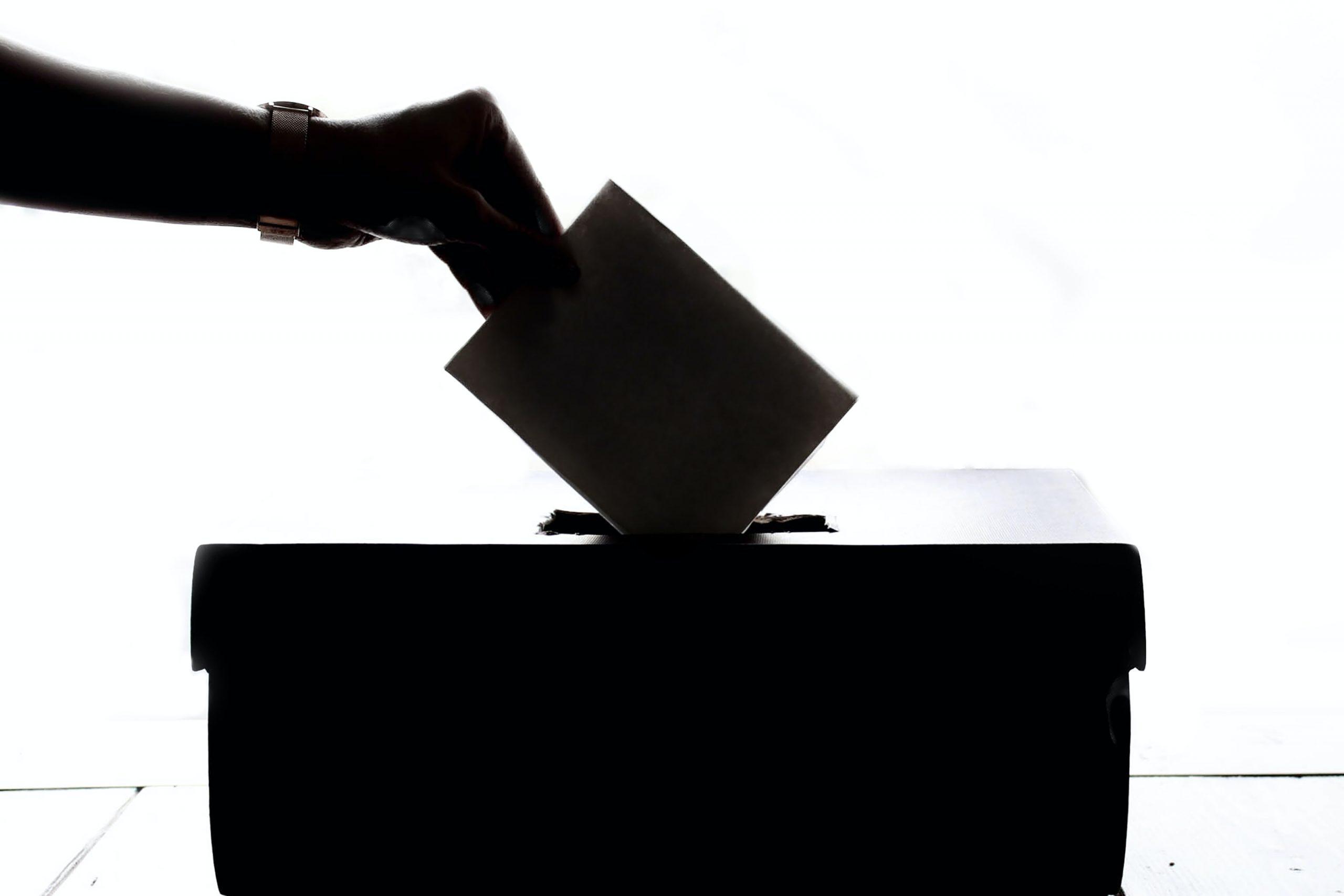 Electoral Roll Search